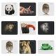 Коврик д/мыши Wild Animals 220x180x2 мм, 8 видов DEFENDER